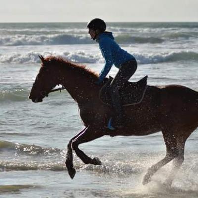 Plage du Linès à 20mn à cheval de la pension