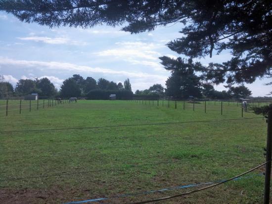 2 autres pâturages nettoyés par les cavaliers à KEROUZINE