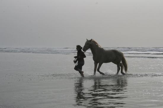 Mise en forme et ballade dans l'eau de mer sur la plage
