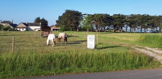 Accès privé (vue littoral) à la pension sans emprunter le chemin CR64