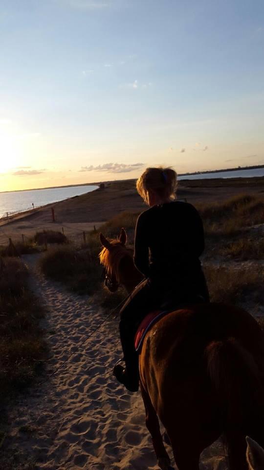 Accès sur la plage du parking par un passage bi-fils balisé pour cavaliers