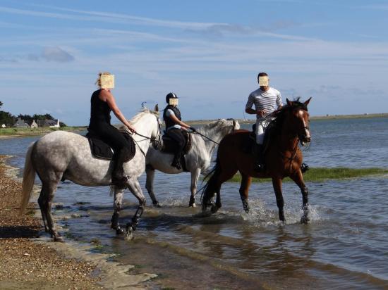 14 - Balade dans la petite mer de Gâvres à 2mn à cheval de la pension