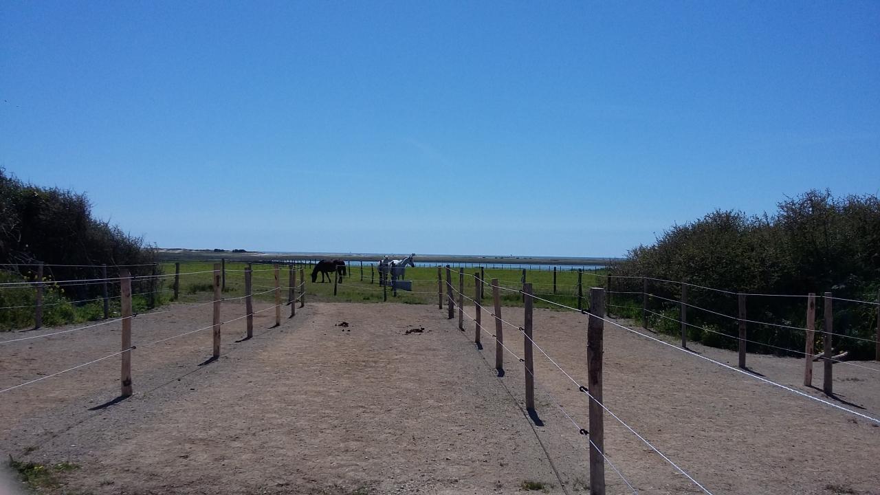 11ha de pâturages juste au bord de la Petite mer de Gâvres