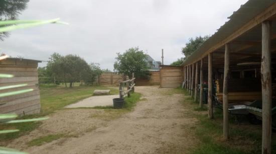 photo 1 aménagements chevaux au siège à Kerouzine